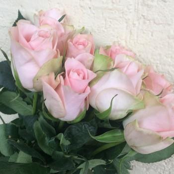 "Роза ""Pink Wedding"" 50-60 см (Импорт)"