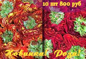 Новинка! Роза! 10 шт 800 руб