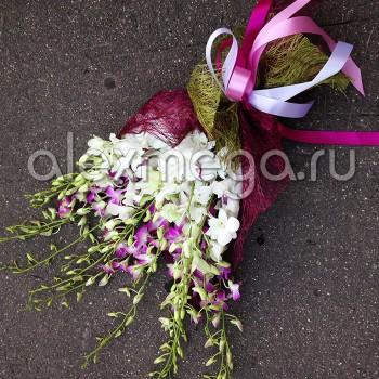 Букет подарочный из орхидей Дендробиум