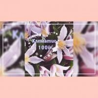 День Влюблённых уже завтра!👀Успей заказать свой особенный букет. ——————— AlexMegaGroup AMG#alexmegagroup#святойвалентин#деньвлюбленных#alexmega#amg#цветочки#цветы#flowers#цветыназаказ#доставкабукетов#цветывкоробке#101роза#букет#свадьба#цветынасвадьбу#свадебноеоформление#букетневесты#флористика#подарок#магазинцветочки#сходненская#фабрициуса40#тушинсfкая#циолковского7#митино#пятницкоешоссе42#магазинцветочки#шляпныекоробки#ящички#ящикисцветами#цветочки