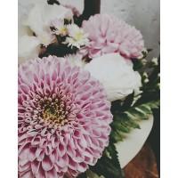 Цветочные композиции в деревянных ящичках за 2100руб!!! ————————————— AlexMegaGroup AMG#alexmegagroup#alexmega#amg#цветочки#цветы#flowers#цветыназаказ#доставкабукетов#цветывкоробке#101роза#букет#свадьба#цветынасвадьбу#свадебноеоформление#букетневесты#флористика#подарок#мага hiзинцветочки#сходненская#фабрициуса40#тушинская#циолковского7#митино#пятницкоешоссе42#магазинцветочки#шляпныекоробки#ящички##цветочки#флорист#флористика#букет#ящикисцветами