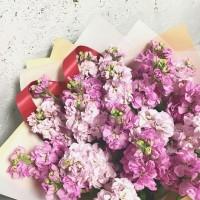 Маттиола - цветок, который своим сладким медовым ароматом напоминает нам о лете! ....Букет на фото 2300руб... ————————————— AlexMegaGroup AMG#alexmegagroup#alexmega#amg#цветочки#цветы#flowers#цветыназаказ#доставкабукетов#цветывкоробке#101роза#букет#свадьба#цветынасвадьбу#свадебноеоформление#букетневесты#флористика#подарок#мага hiзинцветочки#сходненская#фабрициуса40#тушинская#циолковского7#митино#пятницкоешоссе42#магазинцветочки#шляпныекоробки#ящички##цветочки#флорист#флористика#букет#ящикисцветами