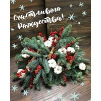 Дорогие Друзья! Поздравляем Вас с Рождеством Христовым✨ Пусть этот тёплый праздник наполнит ваш дом радостью,светом и благополучием! Желаем вам мира,добра,любви и крепкого здоровья! Навсегда ваша,команда @alexmegagroup ❤️ ——————— AlexMegaGroup AMG#alexmegagroup#alexmega#amg#цветочки#цветы#flowers#цветыназаказ#доставкабукетов#цветывкоробке#101роза#букет#свадьба#цветынасвадьбу#свадебноеоформление#букетневесты#флористика#подарок#магазинцветочки#сходненская#фабрициуса40#тушинсfкая#циолковского7#митино#пятницкоешоссе42#магазинцветочки#шляпныекоробки#ящички#ящикисцветами#цветочки