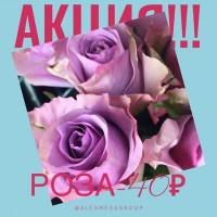 Доброе утро!!! АКЦИЯ НА РОЗУ!!! Роза Россия 40см-40₽!!! Ждём Вас ежедневно с 9:00 до 21:00 @alexmegagroup ——————— AlexMegaGroup AMG#alexmegagroup#alexmega#amg#цветочки#цветы#flowers#цветыназаказ#доставкабукетов#цветывкоробке#101роза#букет#свадьба#цветынасвадьбу#свадебноеоформление#букетневесты#флористика#подарок#магазинцветочки#сходненская#фабрициуса40#тушинская#циолковского7#митино#пятницкоешоссе42#магазинцветочки#шляпныекоробки#ящички#ящикисцветами#цветочки#флорист#флористика#букет