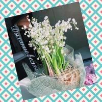 Convallaria-ЭКСКЛЮЗИВ!!! Что может быть более весенним?В НАЛИЧИИ‼️‼️ ——————— AlexMegaGroup AMG#alexmegagroup#alexmega#amg#цветочки#цветы#flowers#цветыназаказ#доставкабукетов#цветывкоробке#101роза#букет#свадьба#цветынасвадьбу#свадебноеоформление#букетневесты#флористика#подарок#магазинцветочки#сходненская#фабрициуса40#тушинсfкая#циолковского7#митино#пятницкоешоссе42#магазинцветочки#шляпныекоробки#ящички#ящикисцветами#цветочки