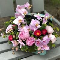 Ежедневно мы помогаем радовать Ваших близких нашими флористическими работами✨Приятные моменты вместе с @alexmegagroup ❤️ Композиция в чемоданчике-5900₽ ——————— AlexMegaGroup AMG#alexmegagroup#alexmega#amg#цветочки#цветы#flowers#цветыназаказ#доставкабукетов#цветывкоробке#101роза#букет#свадьба#цветынасвадьбу#свадебноеоформление#букетневесты#флористика#подарок#магазинцветочки#сходненская#фабрициуса40#тушинсfкая#циолковского7#митино#пятницкоешоссе42#магазинцветочки#шляпныекоробки#ящички#ящикисцветами#цветочки